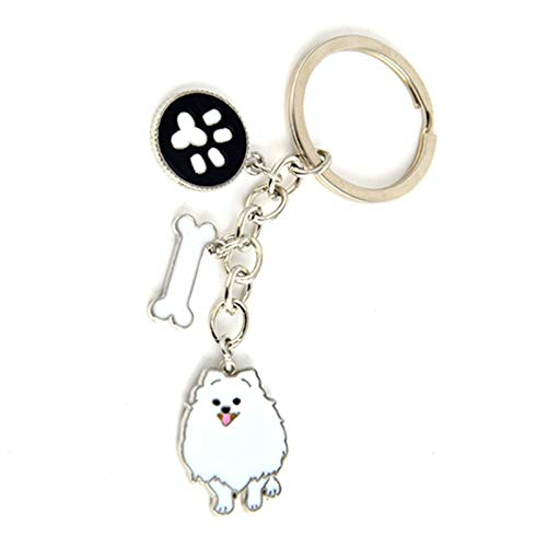 (Key Chains - Jewelry Lovely Pomeranian Dog Charm Key Chains for Women Men Metal Pet Dogs Keychains Bag car Key Ring Holder Gifts - by Mct12-1 PCs)