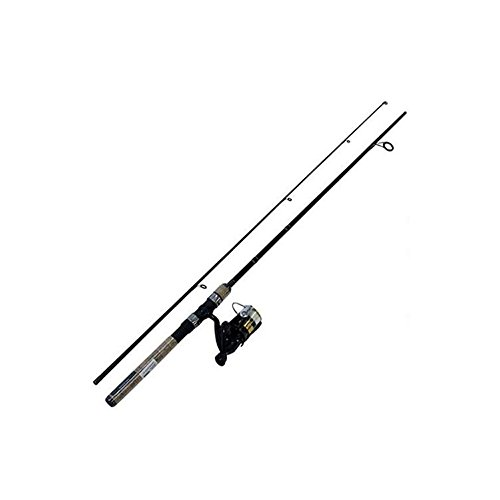 Daiwa DSK20-B/F602ML-8C D-Shock Freshwater Spinning Combo, 2000 Reel Size, 6' Length, 2Piece Rod, 4-10 Line Rate, Medium/Light Power
