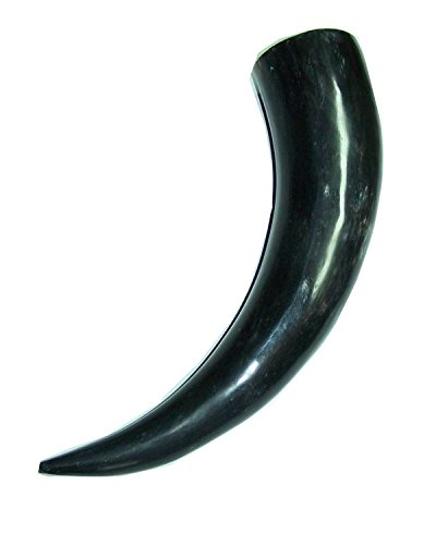 Polished Buffalo Horn - Natural American Bison Horn (10-14 Inches)