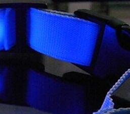 Runfon Collar de Perro Luminoso LED Collar de Seguridad de Nailon para Perro Gato animaux-l