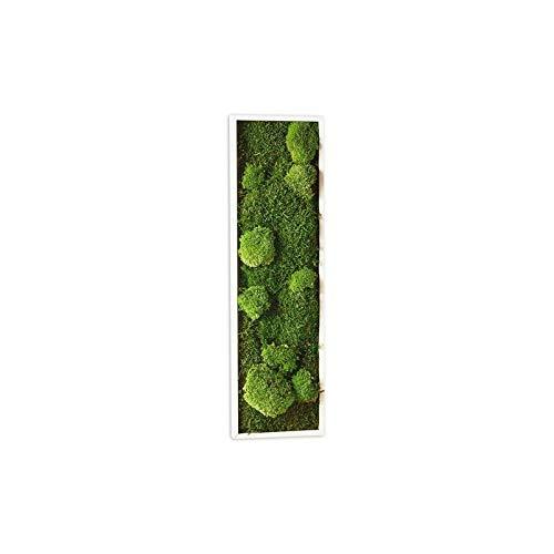 tableau végétal vert