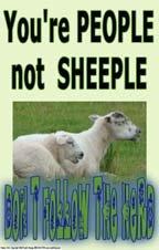 Poster #212 Middle School, High School Poster, Social Skills