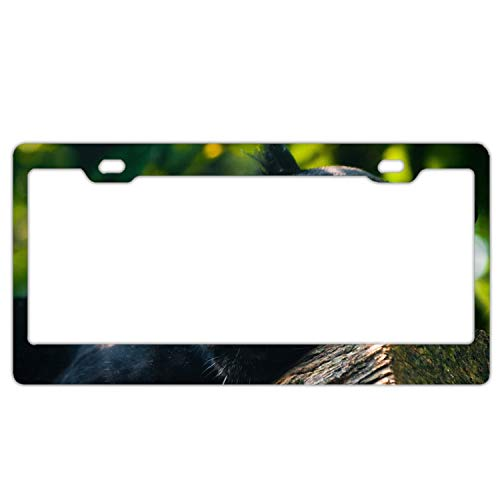 Elvira Jasper 3D Panther Timber Lying Metal License Plate Frame Tag Holder with Screw Cap Covers ()