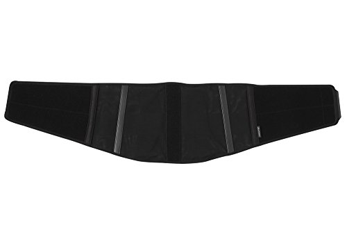 Phiten Lumber Support, Black, Large