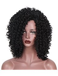 ": Synthetic Afro Kinky Curly Wigs for Black Women African American 16"" Long Black Kinky Curly Hair Heat Resistant Wigs"
