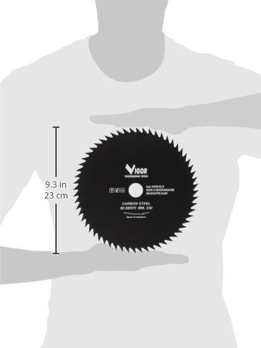 Discos para desbrozadora Vigor: Amazon.es: Bricolaje y herramientas