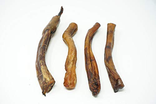 # 1 Texas Sized 6 thick bully sticks for dogs, 100% all natural dog treats sourced and made in USA - Freshly cooked from Texas to bring Amazing Smoky Flavor from Jacks Premium!! 4pk avg. 8Oz.