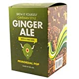 Copernicus - Brew it Yourself - Gingerale