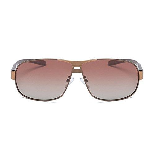 Aoligei Hommes lunettes de soleil classiques lunettes de soleil polarisées brossé couleur Double shing F