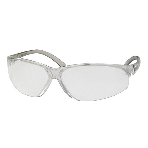 ERB 16515 Superbs Safety Glasses, Clear Frame with Clear Anti-Fog Lens