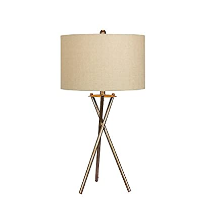 "Cory Martin W-1545RSIL Fangio Lighting's Industrial Tripod Metal Table Lamp, 31"", Rusted Silver"
