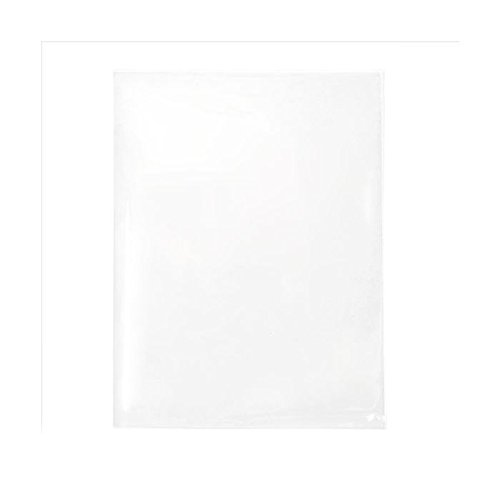 ClearBags 4 5/8 x 5 7/8 Crystal Clear No Flap Open Ended Bags | Protects Photos, Artwork, Crafts, Favors | Acid Free and Archival Safe | B54NFA (1 Pack of 100)