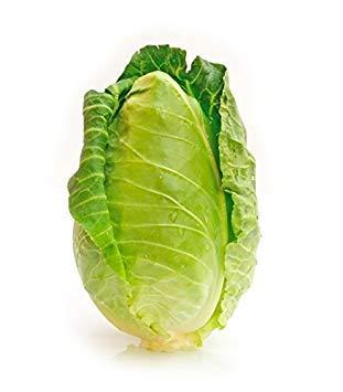 Cone Heirloom - Plentree 300 Charleston Wakefield Cabbage Heirloom Cone Brassica Oleracea Vegetable Seeds
