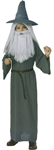 Boys Hobbit Gandalf Kids Child Fancy Dress Party Halloween Costume, L (12-14) (Hobbit Costume Toddler)