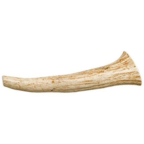 Solid Antlers for Dogs [Medium] - Bulk Elk, Deer, & Moose Antlerz Chews, Dog Dental Treats & Pet Products