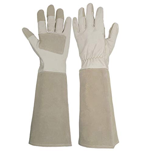 (Long Sleeve Leather Gardening Gloves,Puncture resistant,Breathable Pigskin Leather Gauntlet,Rose Pruning Floral Gauntlet Garden Gloves For Women and Men (Medium, Beige))