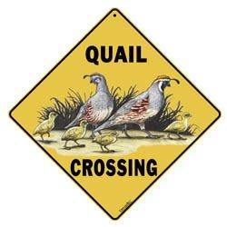 Quail Crossing Novelty Metal Crossroad Sign, 12 x 12