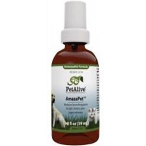 Amazapet asthma spray reviews for cats by Petalive