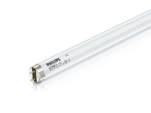 Philips 15W 18in T8 Black Light Fluorescent - White Bulb Actinic