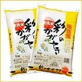 【精米】 埼玉県産 無洗米 彩のかがやき 10kg(5kg×2袋) 平成29年産 新米