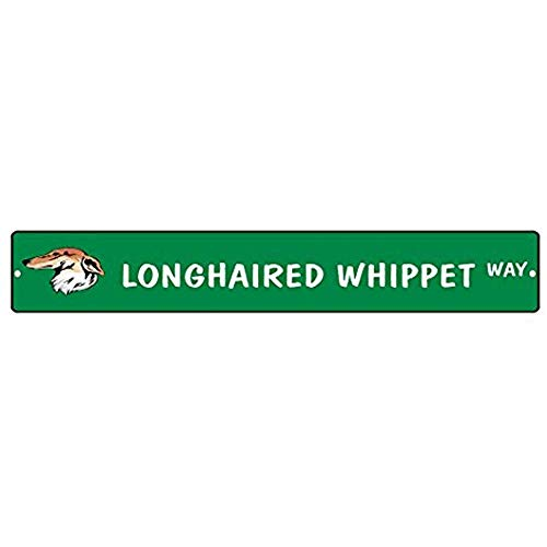 Longhaired Whippet Dog Way 4