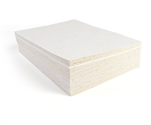 Bloomin Signature 10 pt. Seed Paper for Inkjet Printers - 50-75% Germination Rate - 8.5x11 Sheets (1 Pack- 100 Sheets) by Bloomin