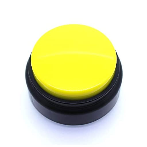 Recordable Talking Button - Now Record Any 20 Seconds Surprise Message