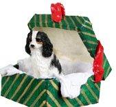 - Cavalier King Charles Spaniel Green Gift Box Dog Ornament - Tri
