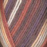 - Plymouth (1-Pack) Encore Worsted Colorspun Yarn Phoenix Sunset 7809-1P