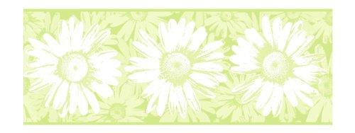 York Wallcoverings BT2729B Daisy Border, Key Lime Green/Celery Green/Bright White ()