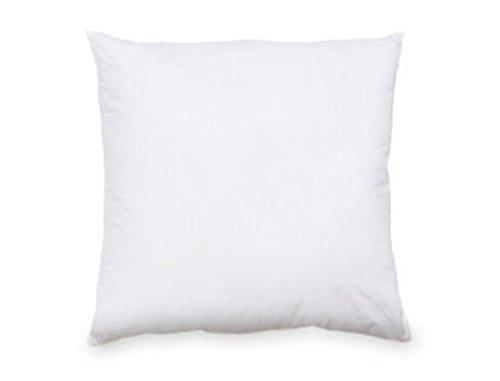 Pacific Coast Feather Down European Square Pillow, 26x26