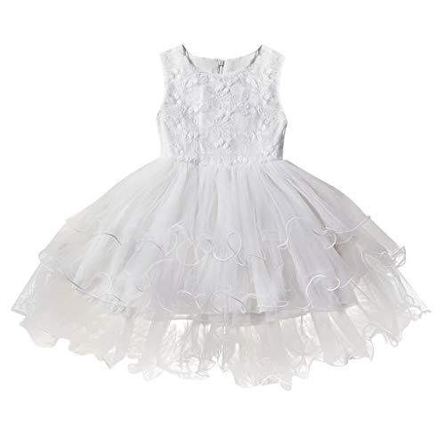 Lavany Little Girls Princess Dress, Cute Sleeveless Dance Tutu Party Dress 1-5 Years