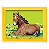 : Foal Paint by Number