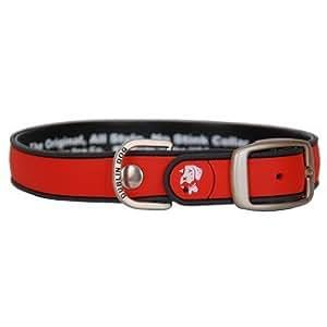 (Dublín perro) no Stink simplemente sólido rojo y gris Collar de perro pequeño
