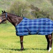 - Kensington Products Poly Cotton Horse Blanket - Lightweight Breathable Equine Stable Day Sheet (78, 181- Kentucky Blue)