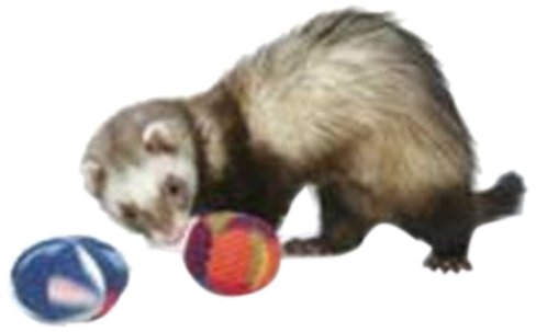 Marshall Pet Bell Ferret - Marshall Pet Products Plush Bell Toy