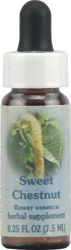 Flower Essence Services Healing Herb Supplement Dropper, Sweet Chestnut, 0.25 Fluid - Services Sweet Essence Flower