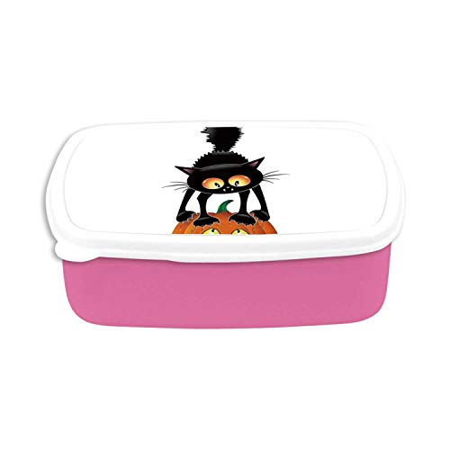 Halloween Decorations Utility Plastic Lunch Containers,Black Cat on Pumpkin Spooky Cartoon Characters Halloween Humor Art for Home,7.09