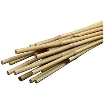 Bond Bamboo Heavy Duty Bamboo Stakes, 6-Feet, 6-Pack