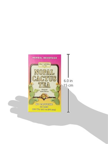 Only Natural Nutritional Supplement Nopal Cactus Tea 20 Count