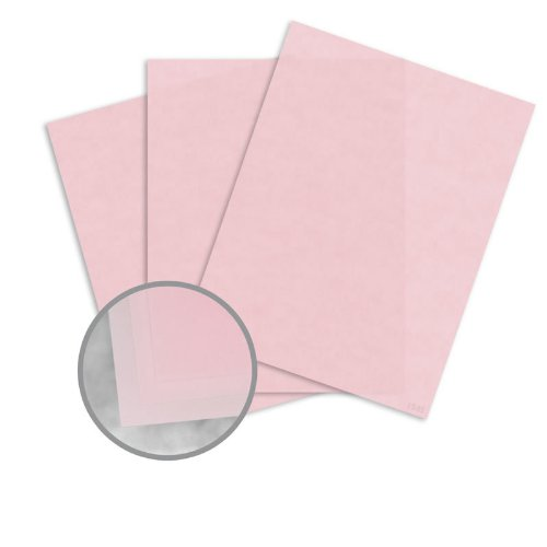 Glama Natural Pastel Pink Paper - 27 1/2 x 39 3/8 in 27 lb Bond Translucent Vellum 100 per Package by CTI Paper USA Glama Natural