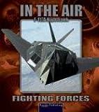 Nighthawk F-117A, Lynn M. Stone, 1595151834