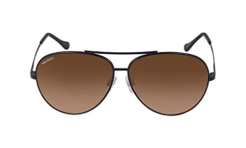 Serengeti Large Aviator Drivers Gradient Sunglasses -