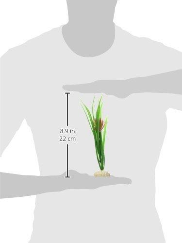 Amazon.com : eDealMax 2-pieza de la planta del tanque de Emulational Flor de Loto Pez, Verde/Fucsia : Pet Supplies