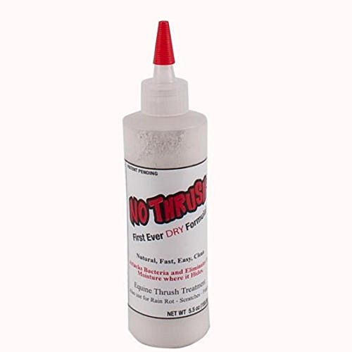 NO THRUSH DRY Formula Thrush Fungus Rain Rot Scratches Treatment Hoof 5.5 oz