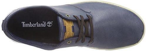 Timberland Newmarket_fulk Lp Low - Zapatillas Hombre Azul - azul (marino)