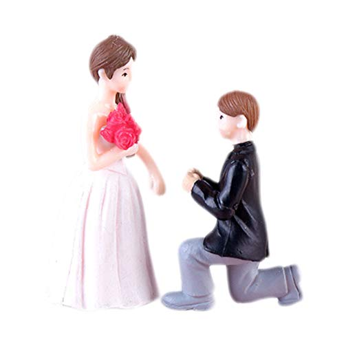 - Cratone 2PCS Resin Dolls Miniature Figures Fairy Garden Bride Groom Propose Wedding Home Decoration (White)