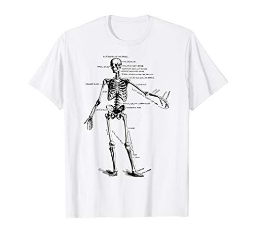 Human Skeleton Anatomy Drawing Diagram T-Shirt