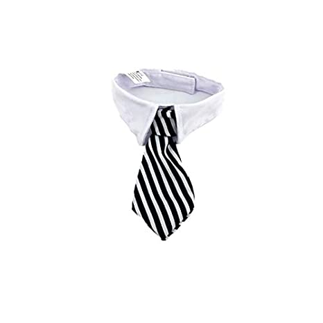 PALMFOX Collar de Corbata para Perros Pequeños Cachorros ...