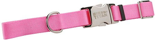 Coastal Pet Products DCP6196220PKB Nylon Titan Adjustable Dog Collar with Metal Buckle, 1-Inch, Bright Pink
